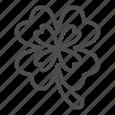 clover, irish, luck, patrick, leaf, nature, plant