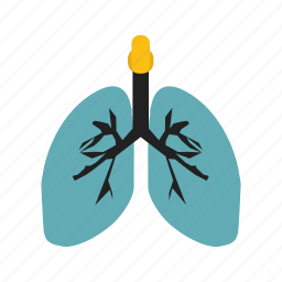 anatomy, lungs, medical icon