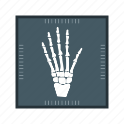 hand x ray, healthcare, medical icon