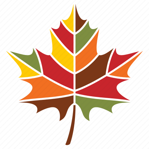autumn, leaf, nature, plant, season, weather icon