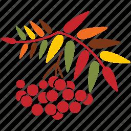 autumn, leaves, nature, plant, rowan, season, tree icon