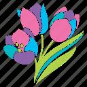 bouquet, flowers, nature, pastel, season, spring, tulips