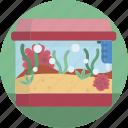 pet, shop, fish, aquarium