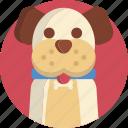pet, shop, dog, cute, animal