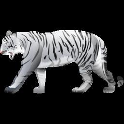 tiger, white icon