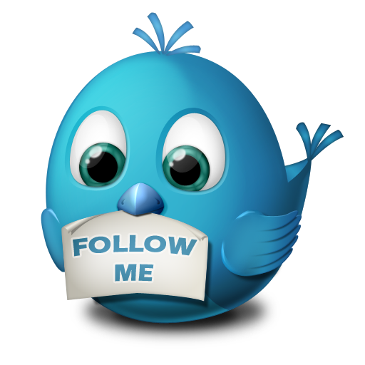 animal, bird, follow me, twitter icon