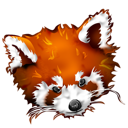 animal, firefox, fox, panda, roux icon