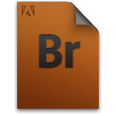 br, document, file, genericfile icon