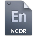 document, file, ncorproject icon
