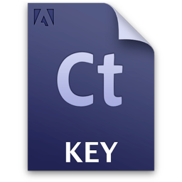 connectionkey, document, file icon