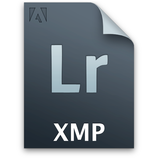 document, file, lr, secondary, xmp icon