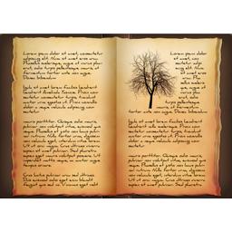 Λίστα Βιβλίων προς απόσυρση στο Δημοτικό, Γυμνάσιο και Λύκειο Experiences