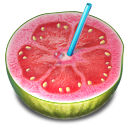 guava, fruit, drink icon