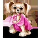 Cerere Mascota Dog