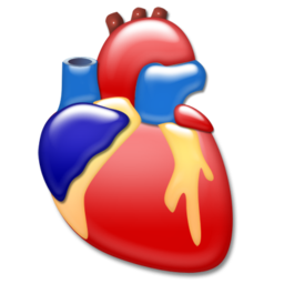 cardiology, heart, organ icon
