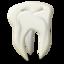 odontology icon