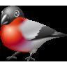 animal, bird, bullfinch, twitter icon