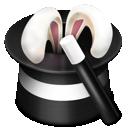 ears, wand icon