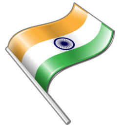 flag icon