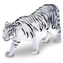 animal, tiger, white icon