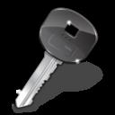 foreign, key icon