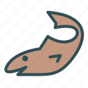 animal, fish, ocean, sea, shark, water icon