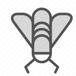 animal, camping, fly, insect icon