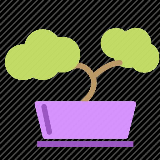 bonsai, flower, plant, pot, small, tree icon