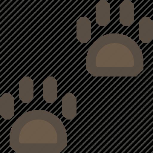 animal, bear, footprint, track icon