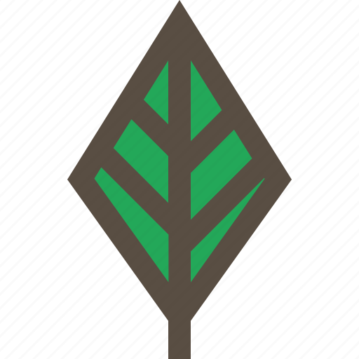 leaf, nature, plant, tree icon