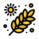 agriculture, farming, garden, grains icon