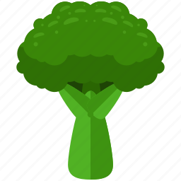 agriculture, brocolli, food, nature, organic, vegetable icon