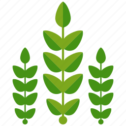 agriculture, crop, crops, farm, farming, leaves icon