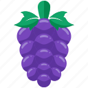 agriculture, crop, farm, farming, grapes, grow icon