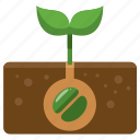 agriculture, farm, farming, grow, growing, plant