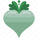 agriculture, crop, farm, farming, grow, radish icon