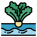 watering, irrigation, gardening, hydroponic, organic, farming icon