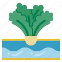 farming, irrigation, gardening, watering, hydroponic, organic