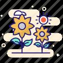 bouquet, flowers, present, invitation icon