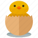 agriculture, animal, chick, farm, hatching, nature icon