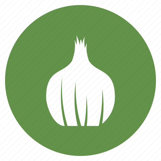 agriculture, farming, onion, vegetable icon