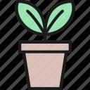 flower, flowerpot, garden, gardening, plant, pot, tool