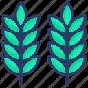 barley, cereal, crop, food, grain, rye, wheat icon
