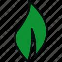 bio, eco, ecology, environment, green, leaf, nature icon