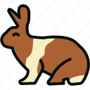animal, animals, bunny, conejo, fast, hare, rabbit icon