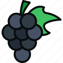 agriculture, food, fruit, grapes, natural, sweet, wine icon