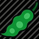 bean, food, green, legume, peas, pod, vegetable