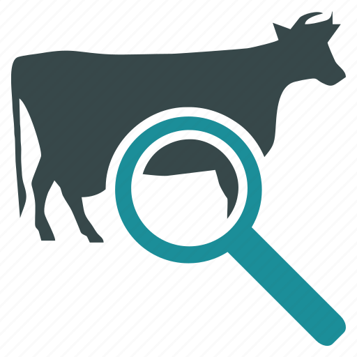 bull, cow, explorer, find, search, test, view icon