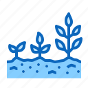 agriculture, plant, planting, spring
