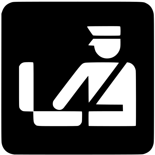 customs icon